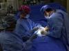 Don d'organe : le principe du consentement présumé