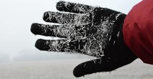 L'engelure : symptômes, causes, traitements et prévention