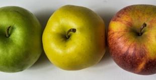 Les bienfaits de la pomme en terme de nutrition