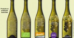L'intolérance aux sulfites dans le vin